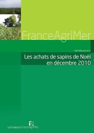 Les achats de sapins de Noël en décembre 2010 - FranceAgriMer