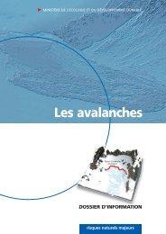 Les grands types d'avalanche - Catalogue - Prim.net