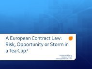 A European Contract Law: Risk, Opportunity or Storm in a Tea Cup?