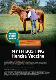 MYTH BUSTING Hendra Vaccine - Townsville Vet Clinic