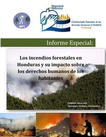 Informe Especial INCENDIOS FORESTALES marzo 2015