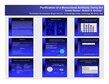 Purification of a Monoclonal Antibody Using the
