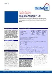 Injektionsharz 100