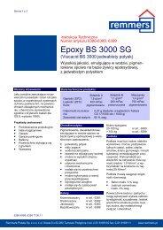 Epoxy BS 3000 SG