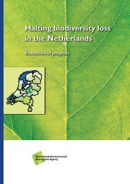 Halting biodiversity loss in the Netherlands - RIVM