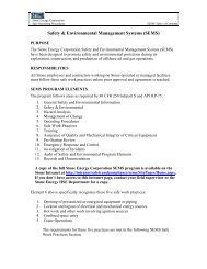 Safety & Environmental Management Systems (SEMS)