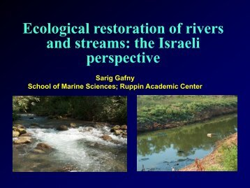 Ecological restoration of rivers and streams: the Israeli perspective