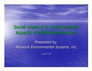 Social Impacts & Environmental Aspects of Methamphetamine - NES