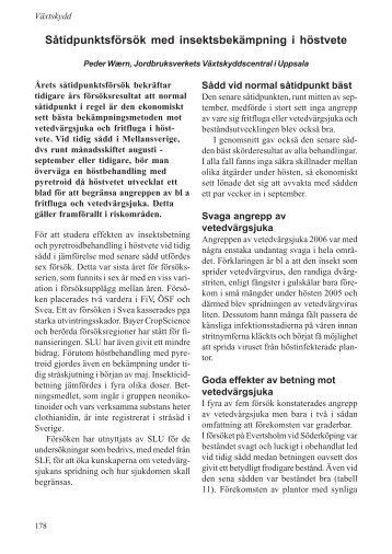 Såtidpunktsförsök med insektsbekämpning i höstvete - SLU