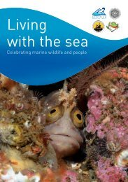 Celebrating marine wildlife and people - Scottish Wildlife Trust