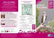 Loch of the Lowes - Scottish Wildlife Trust
