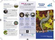SWT LOTHIANS POSTER/12 - Scottish Wildlife Trust