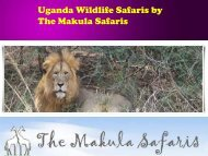 Uganda Wildlife Safaris by The Makula Safaris