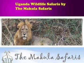 Uganda Wildlife Safaris by The Makula Safaris