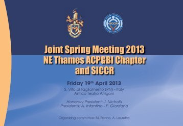 NE Thames Chapter & SICCR Meeting – 19 April 2013