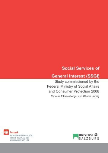 Social Services of General Interest (SSGI)