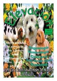 Revista Elevación Nº8, Abril 2015, 2ª Quincena.