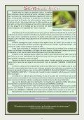 Revista Elevación Nº8, Abril 2015, 2ª Quincena. - Page 4