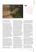 PiF29PT_10_anos_Desenvolvimento_sem_Desmatamento - Page 7