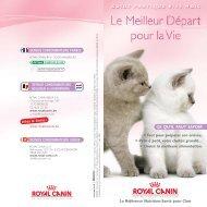 Croissance & Nutrition des chatons - Royal Canin