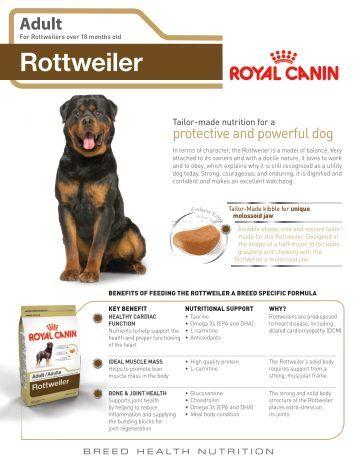 Rottweiler PuPPy - Royal Canin Canada