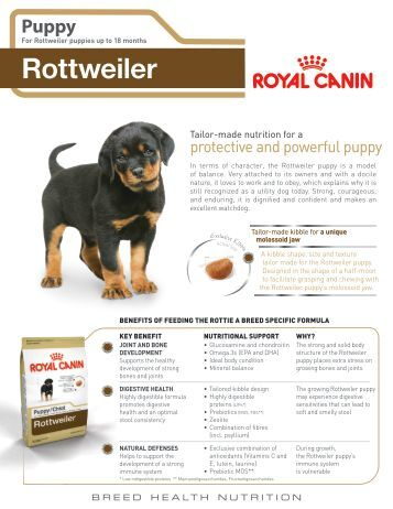 mature - Royal Canin Canada