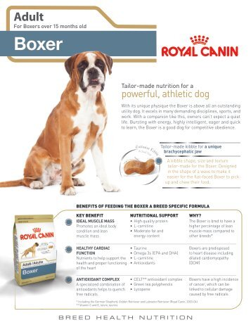 photograph relating to Royal Canin Printable Coupons identify Royal canin boxer 26 coupon codes - Beauty freebies british isles