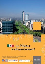 Programme Actions au Mexique 2012 - Le blog de l'export ...
