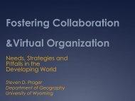 Fostering Collaboration & Virtual Organization