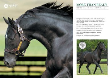 Famed for his two year olds as much as for his older ... - Vinery Stud