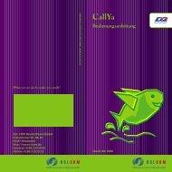 Anleitung CallYa neu - Einzelhandel