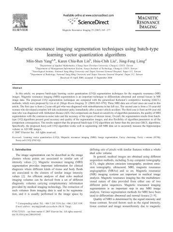 Magnetic resonance imaging segmentation techniques using batch ...