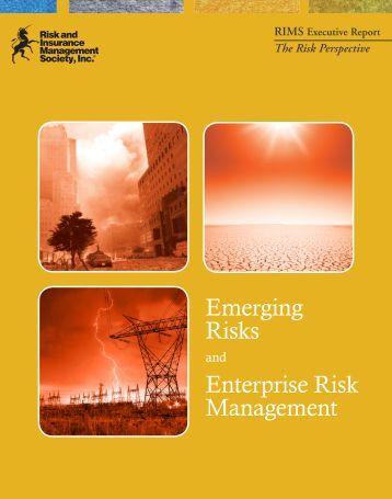 risk management at rim essay