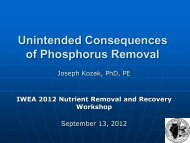 Unintended Consequences of Phosphorus Removal