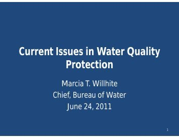 Current Issues in Water Quality Protection