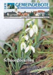 Ausgabe :Gomaringen 09.03.13.pdf - Gomaringer Verlag
