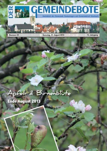 Gomaringen 31.08.13.pdf - Gomaringer Verlag