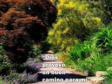 """""""Dios proveyó un buen camino para mí"""" - Editorial La Paz"""
