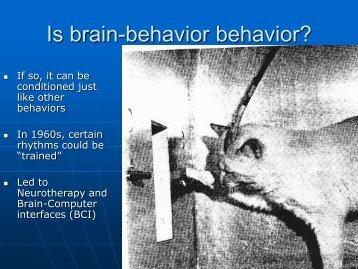 Is brain-behavior behavior? - Neurofeedback