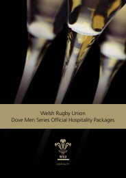 Welsh Rugby Union Dove Men Series Official Hospitality Packages