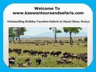 Outstanding Holiday Vacation Safaris