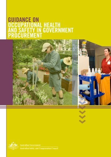 Guidance on occuPaTionaL HeaLTH and SaFeTY in GoVeRnMenT