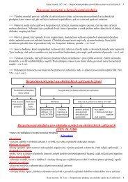 Bezpečnostní předpisy pro obsluhu a práci na elektrických ... - Rutar