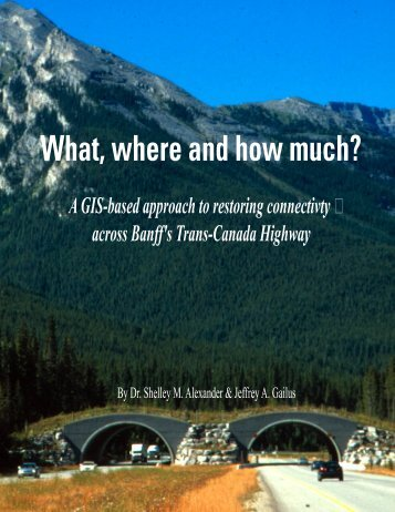 A GIS based approach to restoring connectivity across Banff's Trans ...