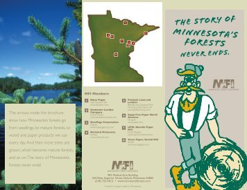 story of Minnesota's forests never ends - Minnesota Forest Industries
