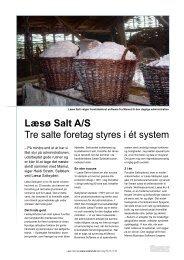 Læsø Salt A/S Tre salte foretag styres i ét system - Mamut