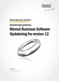 Mamut Business Software Opdatering fra version 12