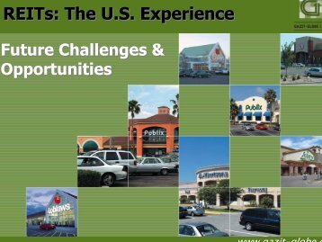 REITs: The U.S. Experience