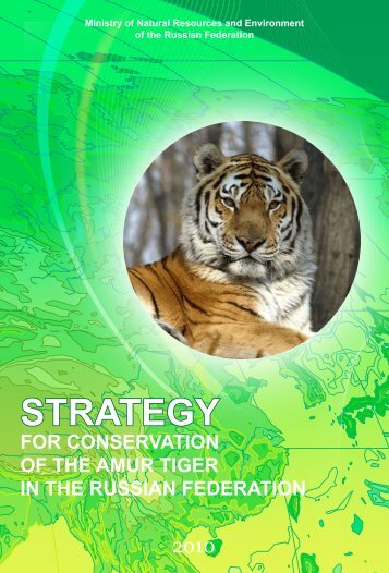 Strategy for conservation of the Amur Tiger in the Russian ...