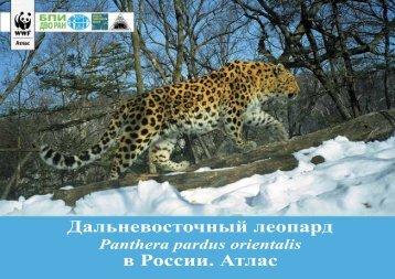 Дальневосточный леопард в России. Атлас - Всемирный фонд ...